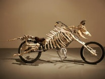 Photo of Mad Cow Motorcycle