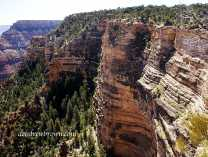 A photo of The Grandest Canyon Collection
